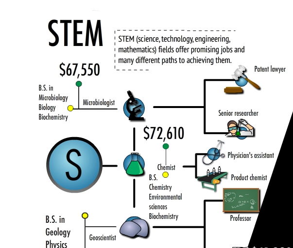 Stem Science Technology Engineering Math: What Can I Do With A STEM Degree? • Ricochet Science